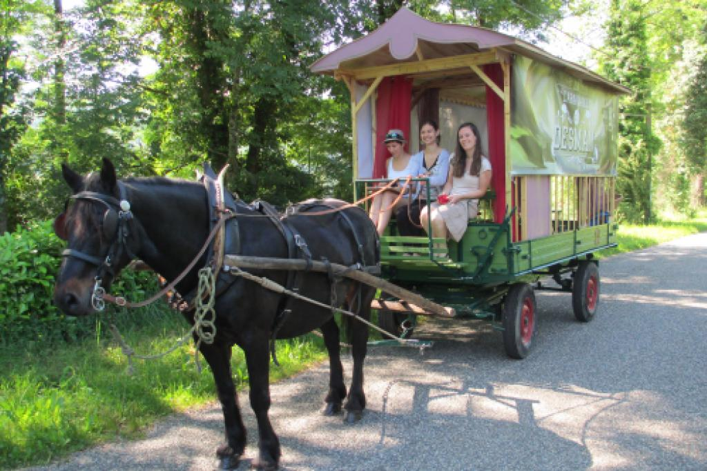 Edition 2015 de la caravane du Desman © L. Hatterley