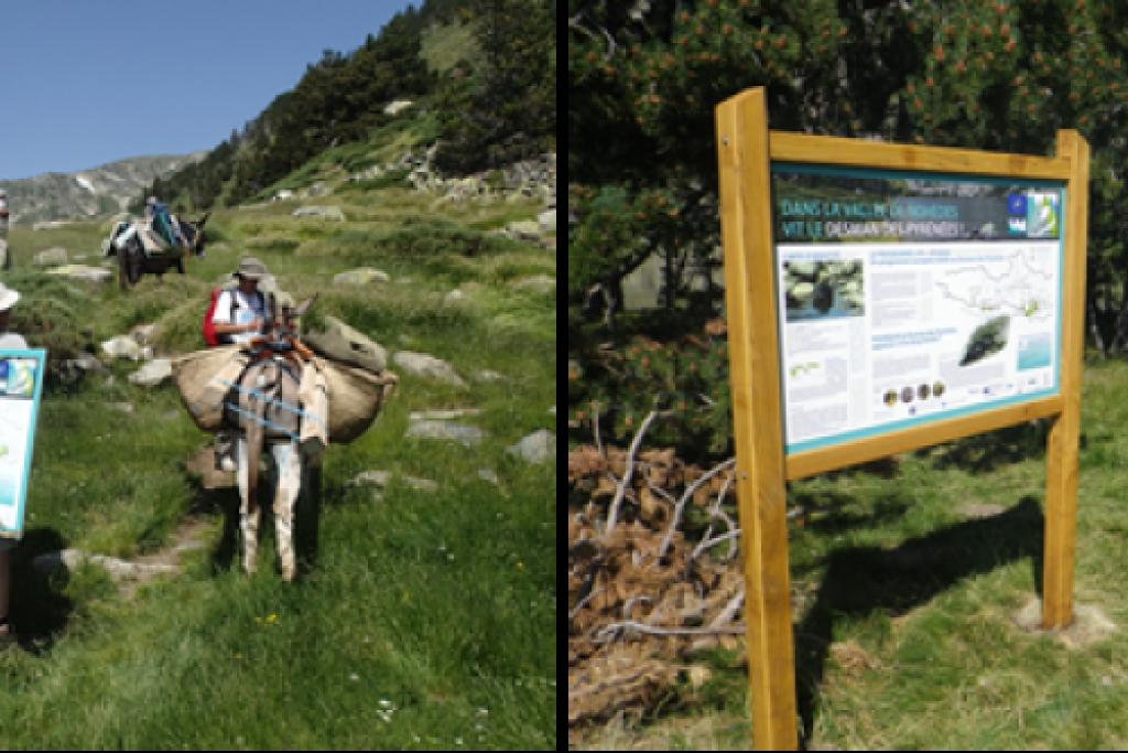 Mise en place des premiers panneaux dans la vallée de Nohèdes
