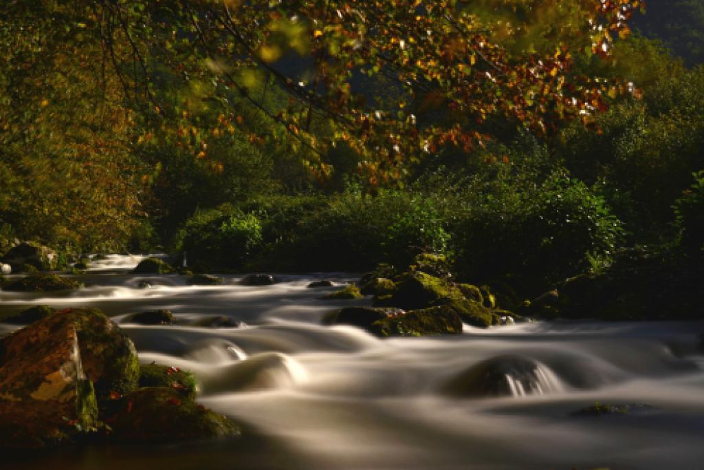 Rivière Aston © F. Blanc