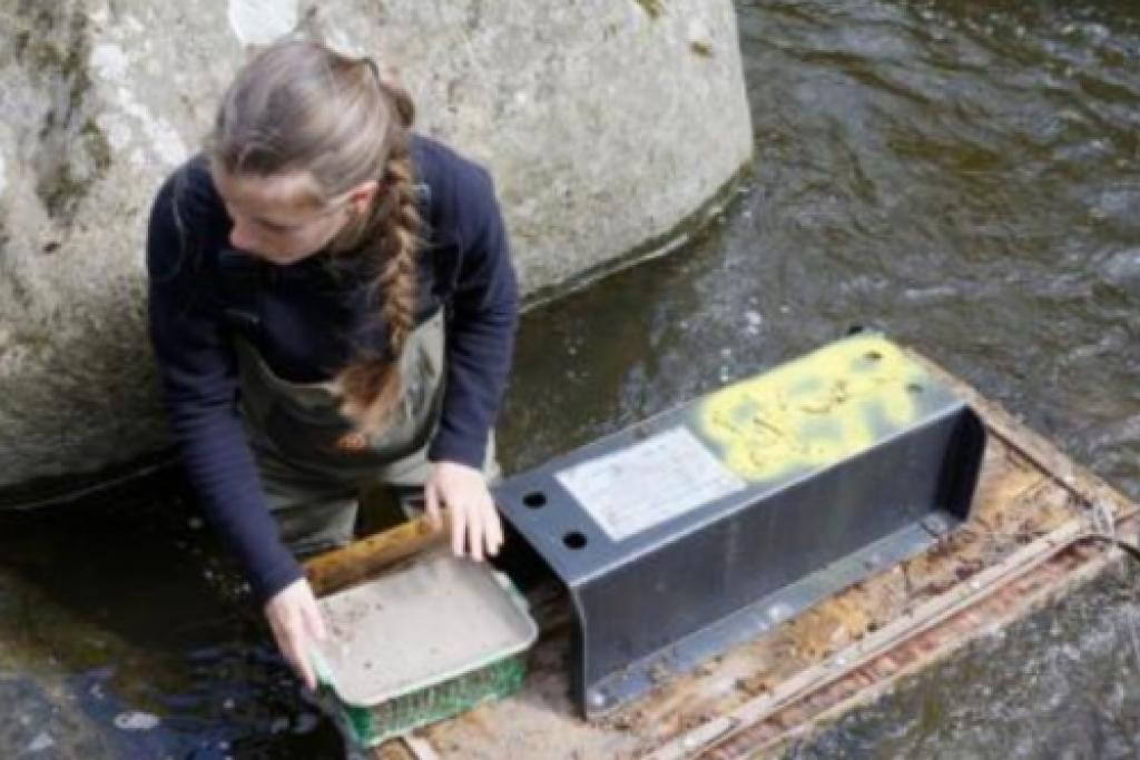 Relevé des radeaux à empreintes situés dans la rivière de Nohèdes © Alain Mangeot (Conservateur de la Réserve de Nohèdes)